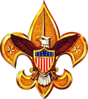 ... to evict the Boy Scouts of America because of the group's ban on gays, ...
